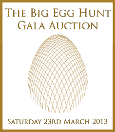 Gala-Live-Auction